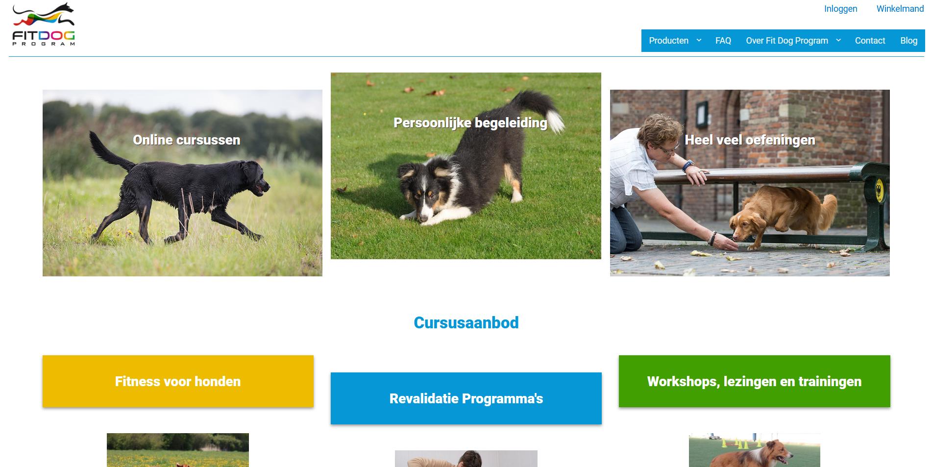 Fit Dog Program